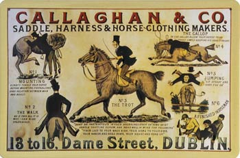 Callaghan & Co